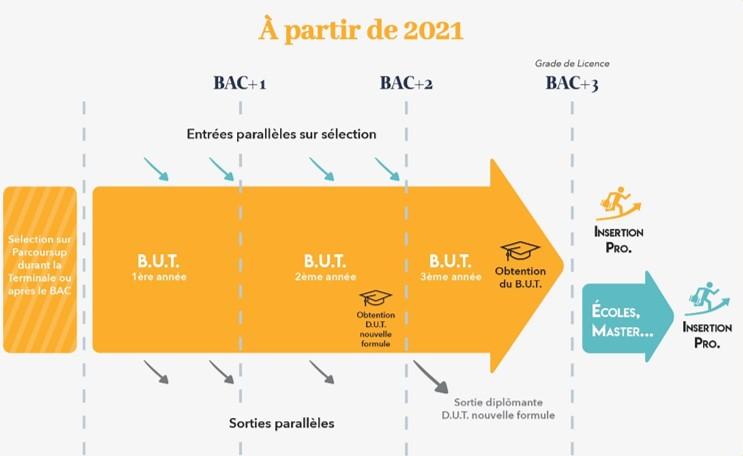 2021-Schema BUT